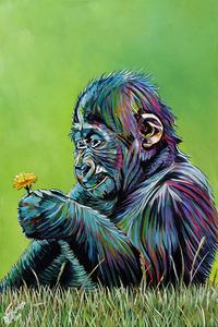 Baby gorilla 2 e s300