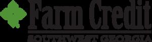 Swga logo   color  1  s300