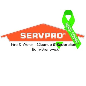 Marcy servpro page 1 s300