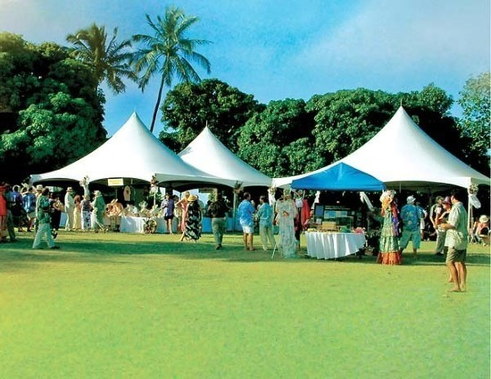 Mich garden party tents s550