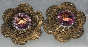 Tsgo clip earrings s300