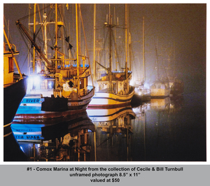 dx 7409 comox marina at night  b c turnbull s300