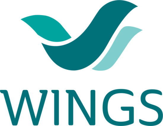 19 06 28 wings logo color s550