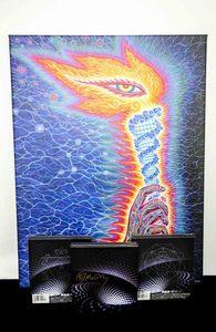 Tool auction teejvision5d webres s300