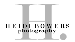 Bowerslogo s300