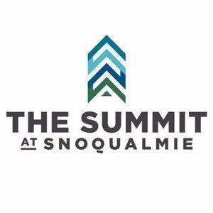 Summit s300