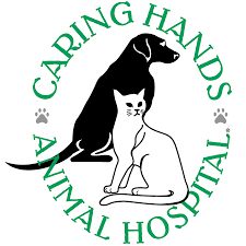 Caring hands logo s300 s300