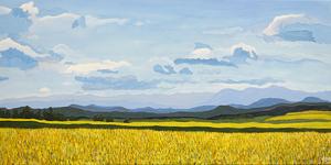 Prairie to mountains e s300