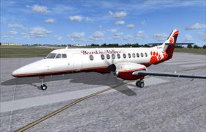 Bearkin airlines s300