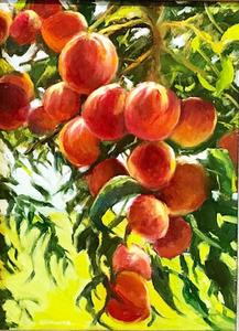 Peaches 2 s300