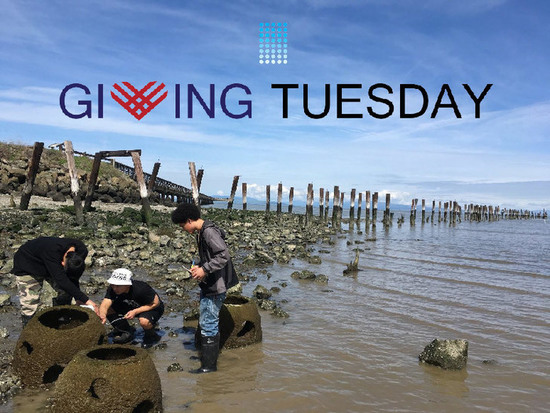 Giving tuesday water s550