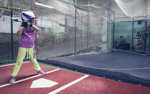 Batting cage 1024x768 s300