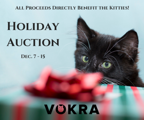 Holiday auction cover copy s550