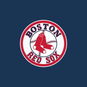 Boston red sox logo  s300