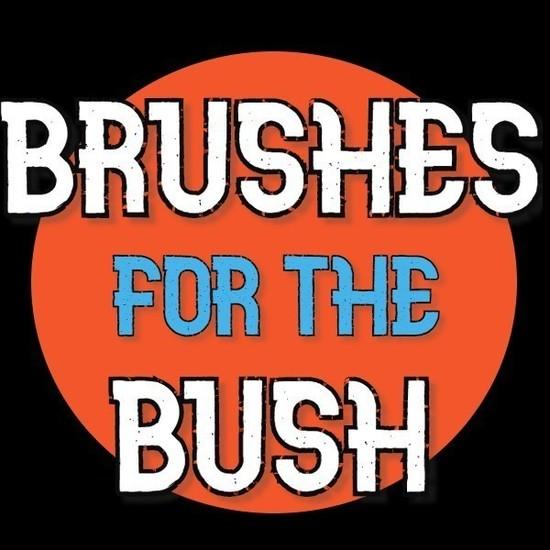 Brushes for the bbftbush s550