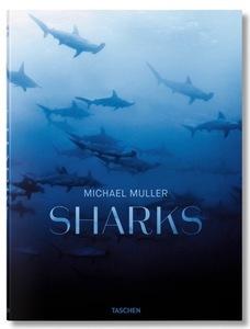 Sharks s300