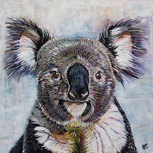 Koala e s300