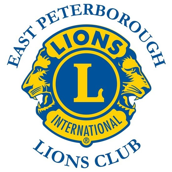 Lions logo s550