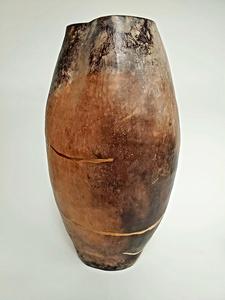 04 buccinokitsugi s300