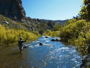 Poudre river fly fishing credit ryan burke 2  dd5c1ce9 4013 4f3b a41d a7ea777ed806 s300