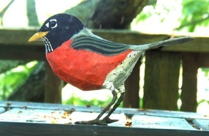 Lightened robin s300
