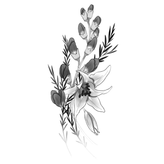 Baptisia, Fawn Lily, Rosemary by @lavender.tattoos